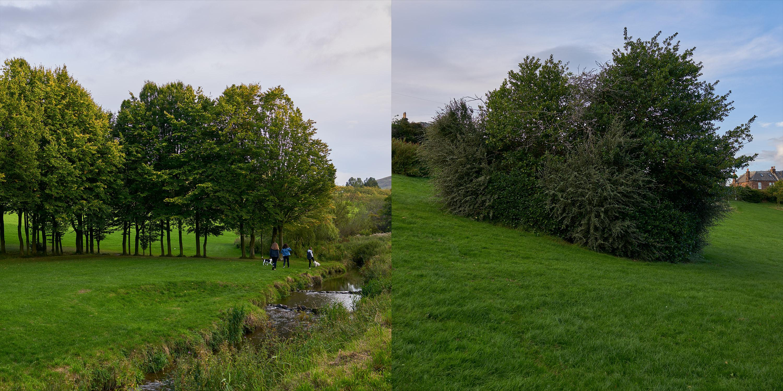 DSC08705 – Edinburgh Braidburn Valley Park 3